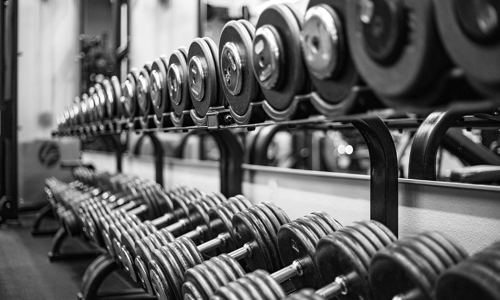Excentrisk och koncentrisk träning – skillnader och likheter