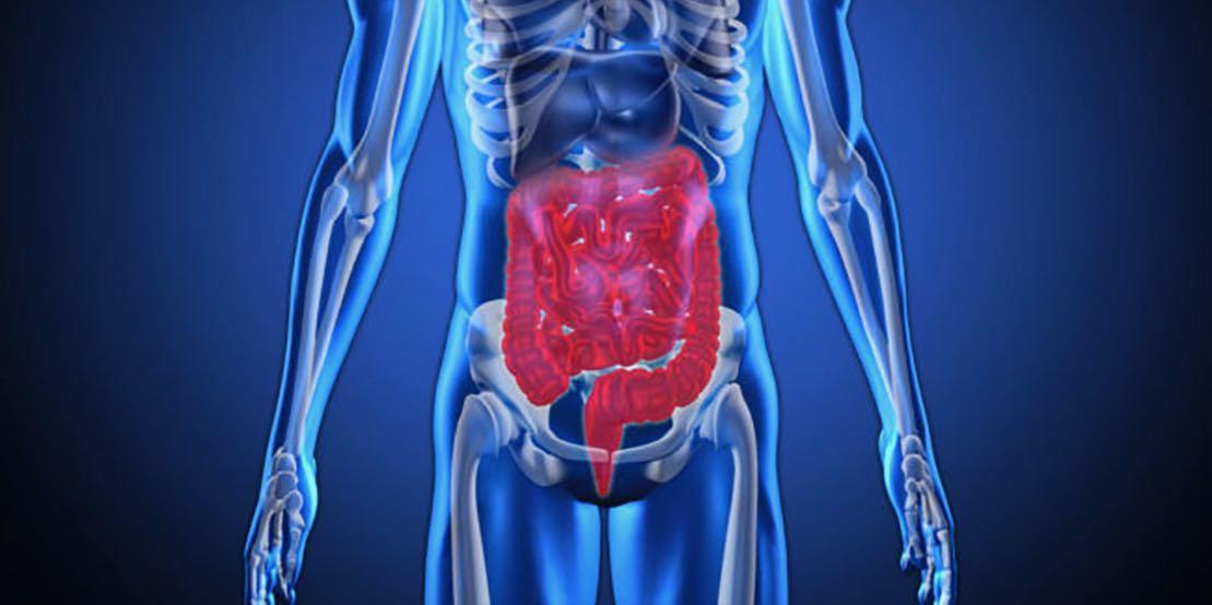 Tarmbakterier i vetenskapens värld och D-vitamin levererar inte som väntat