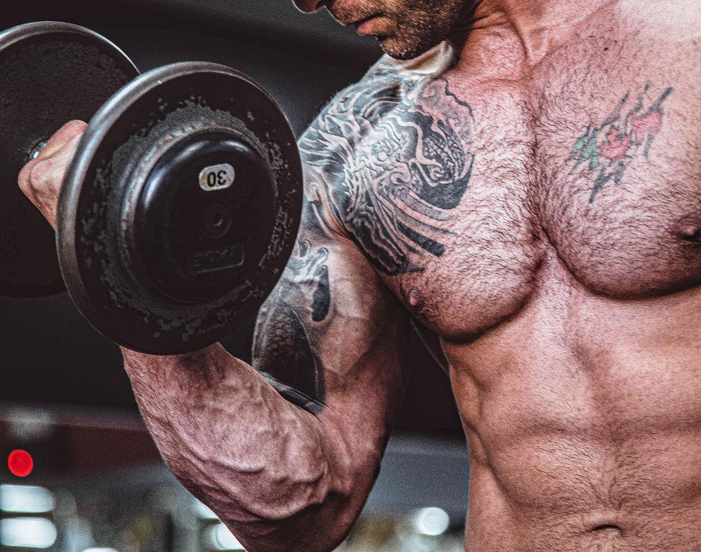 Sambandet mellan muskelmassa och styrka