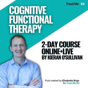 Cognitive Functional Therapy