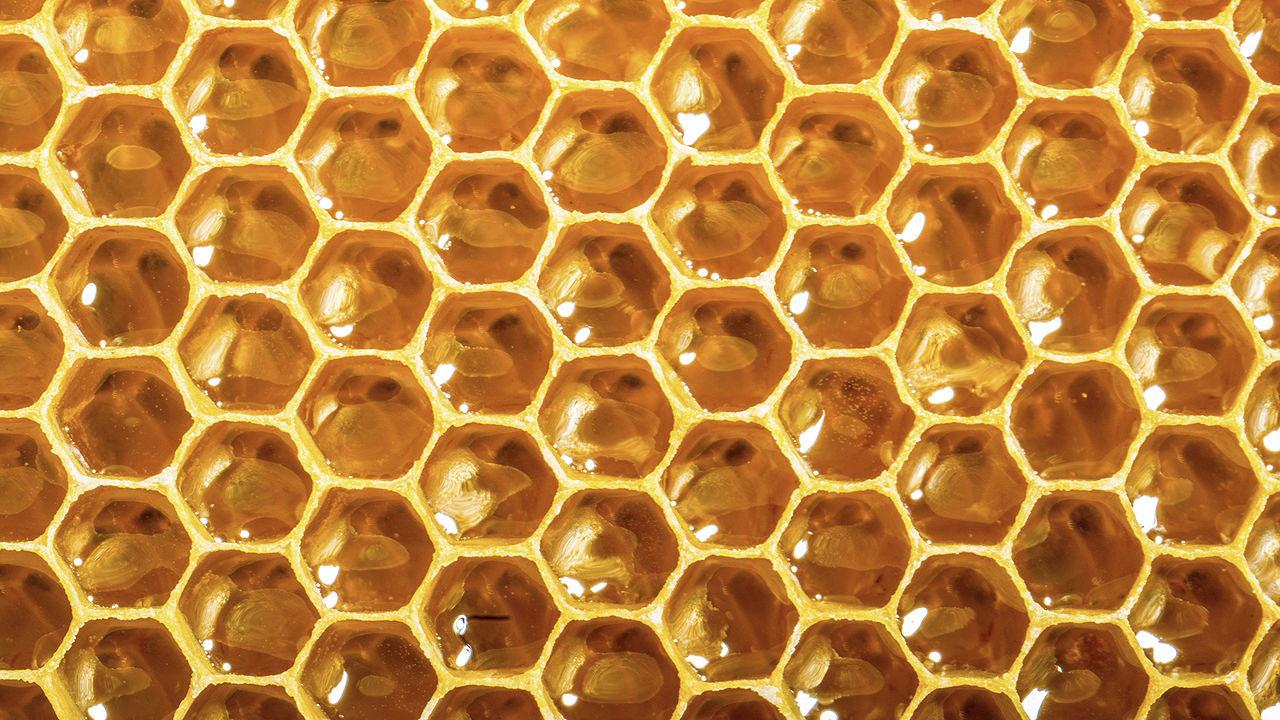 hur mycket socker innehåller honung