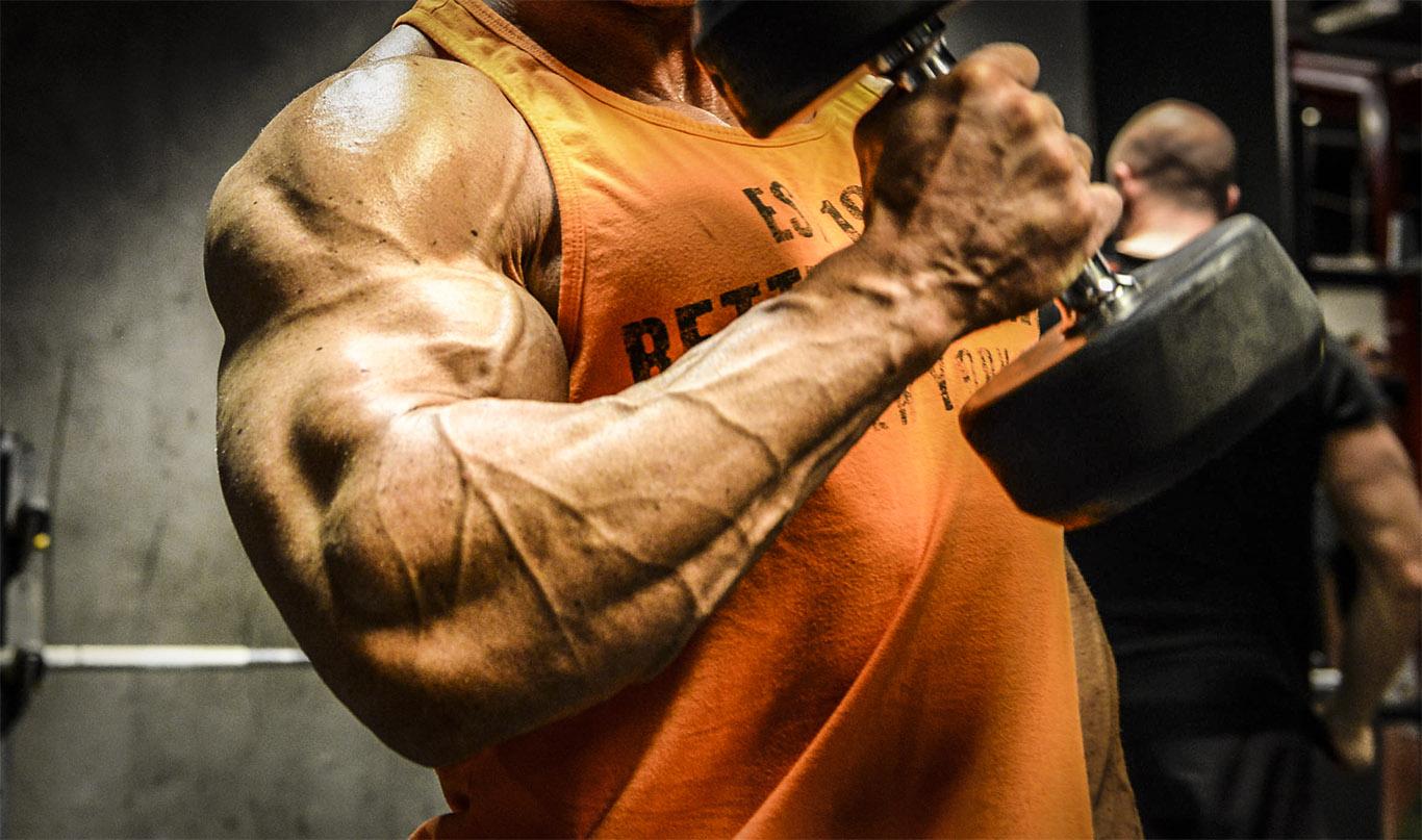 Skadeguide för styrketränande