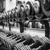 Excentrisk & koncentrisk träning – skillnader och likheter